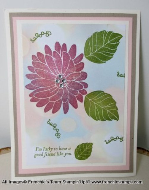 Special Reason Stampin'Up!