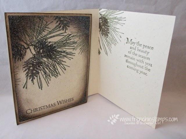 Sparkle Ornamental Pine with Cynthia