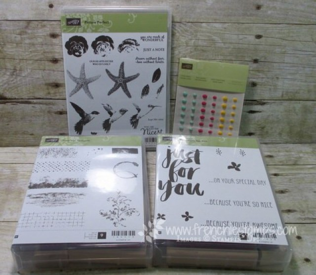 Picture Perfect, Stamping class in the mail, Frenchiestamps,