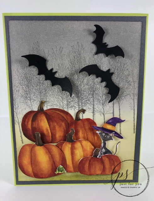 How to use the Toil and trouble designer paper for a simple greeting card. Perfect for Halloween card or fall card. The Winter Woods stamp set is the perfect touch for a fall scenery. All product are by Stampin'Up! and can be purchase at frenchiestamps.com
