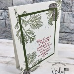 Simple Layering Christmas Card with the Peaceful Boughs.