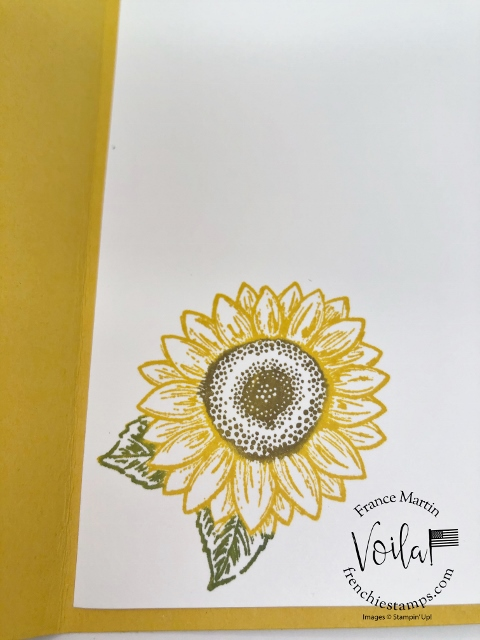 Celebrate Sunflowers