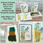 Simple ways to add color to a stamped detailed image Dragonfly Garden