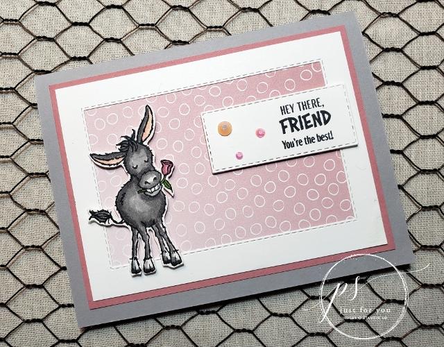 Darling Donkeys Showcase