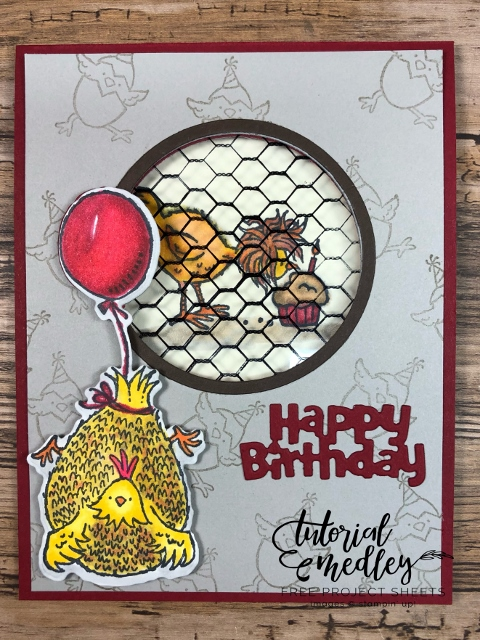 Hey Birthday Chick window Card.