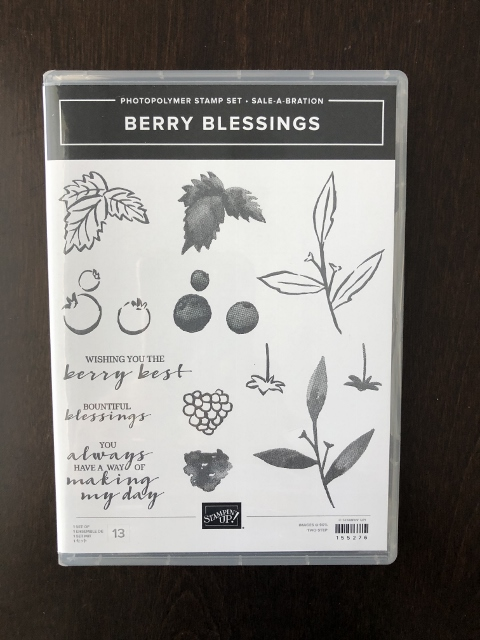 Berry Blessing Stamp Set