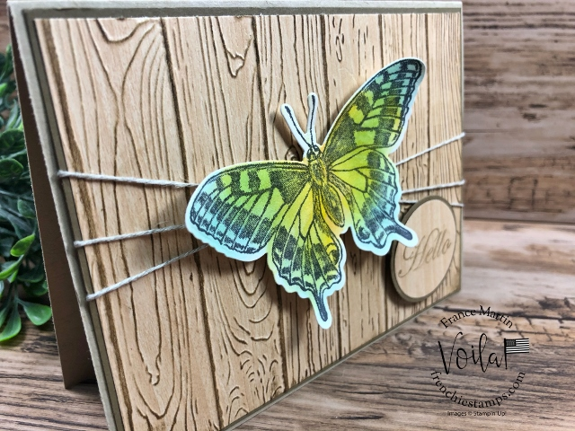 Butterfly Brilliance bundle with the Natural Touch Designer Paper.