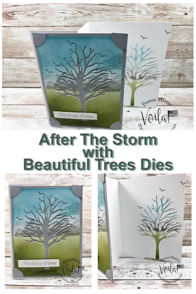 Beauty Of Friendship Bundle With After The Storm