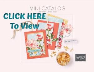 Stampin'Up! Jan-June 2021 mini catalog