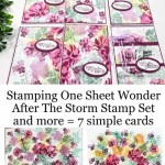 Stamping One Sheet Wonder with After the Storm and more stamps.