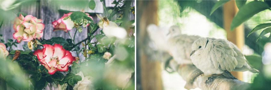 Backyard-Wedding-Animals-Giant-Letters-02