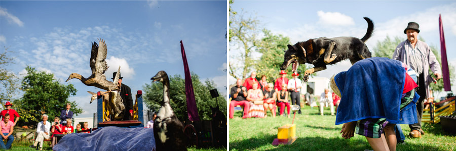 red-cow-themed-wedding-21