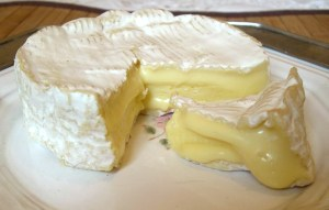 Picture of french cheese, camembert.