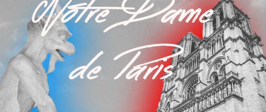 Notre Dame de Paris, Histoire