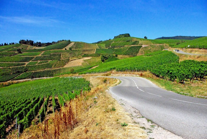 The Alsace Wine Route in the vicinity of Turckheim © French Moments