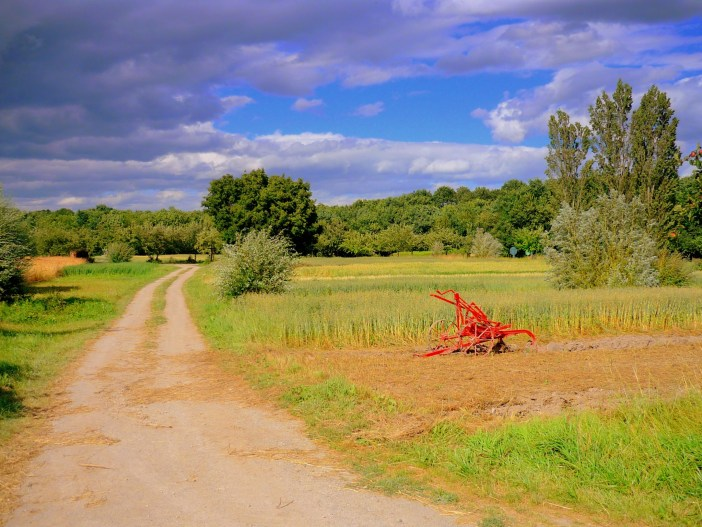 Fields in the Ecomusée d'Alsace © French Moments
