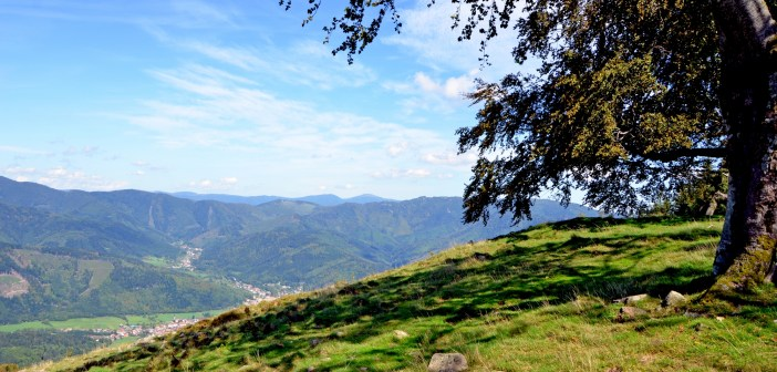 The Doller Valley in the Vosges © French Moments
