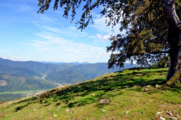 Vosges mountains © French Moments
