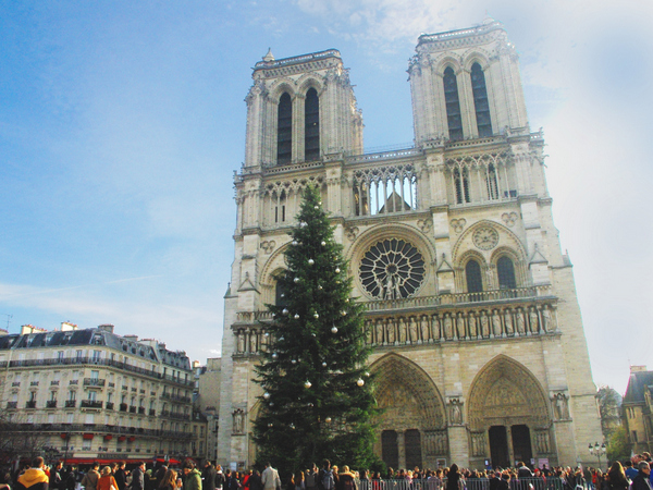 French Christmas Tree Notre-Dame