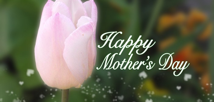 Mothers Day copyright French Moments
