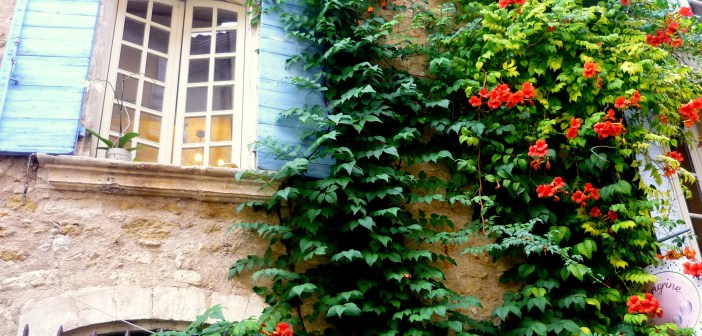 Lourmarin 13 © French Moments