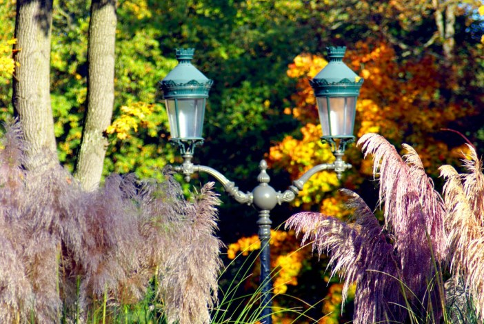 Autumn in Maisons-Laffitte © French Moments