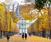 All there is to know about Autumn in France