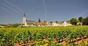 Vineyards of Aloxe Corton © Palauenc05- licence [CC BY-SA 3