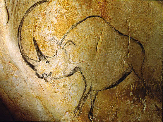 Chauvet Cave Rhinoceros © Inocybe from Wikimedia Commons
