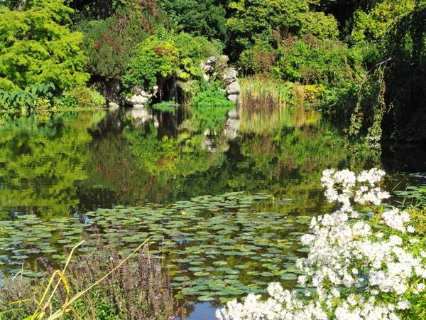 Nymph Pond, Parc de Bagatelle © French Moments
