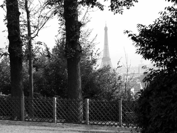 Parc de Saint Cloud NB 17 copyright French Moments