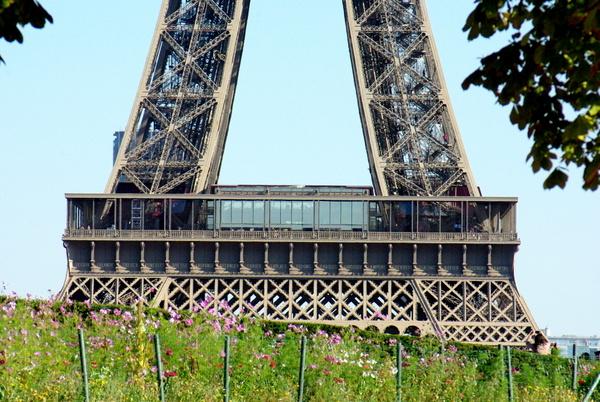 Trocadéro 24 © French Moments