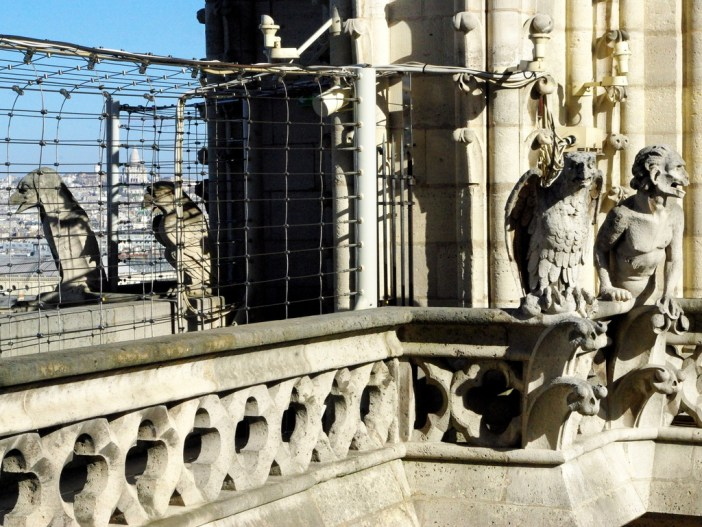 The chimera of Notre-Dame © French Moments