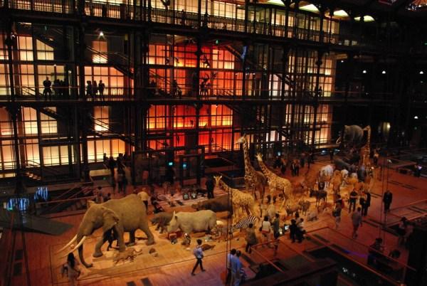 Grande Galerie de l'Evolution Paris French Moments