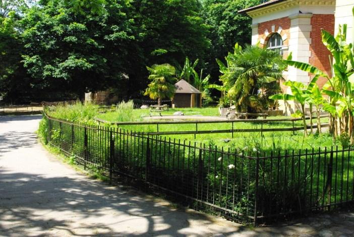 Ménagerie du Jardin des Plantes 1 copyright French Moments