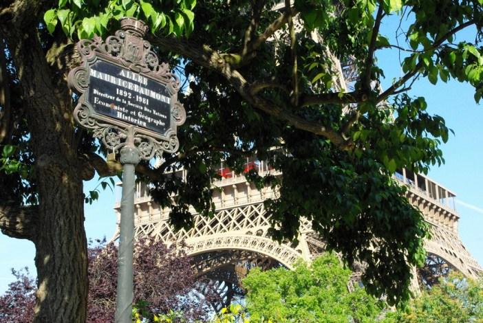 Champ de Mars Paris June 2015 13 © French Moments