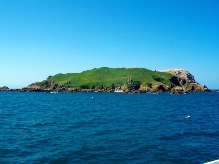 Rouzic Island Ploumanac'h © Raphodon - licence [CC BY-SA 3.0] from Wikimedia Commons