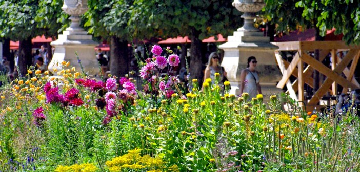Tuileries Garden in Summer Paris © French Moments