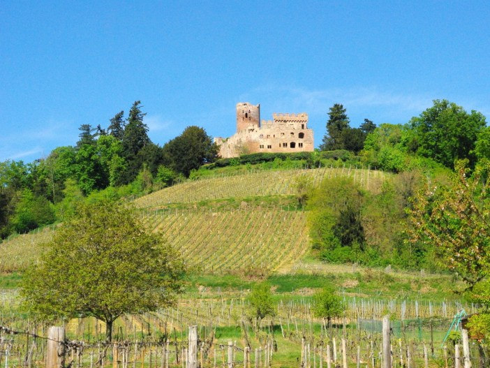 The Castle of Kintzheim, Alsace © French Moments