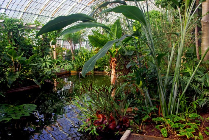 Inside the tropical greenhouse, Jardin des Serres d'Auteuil © French Moments