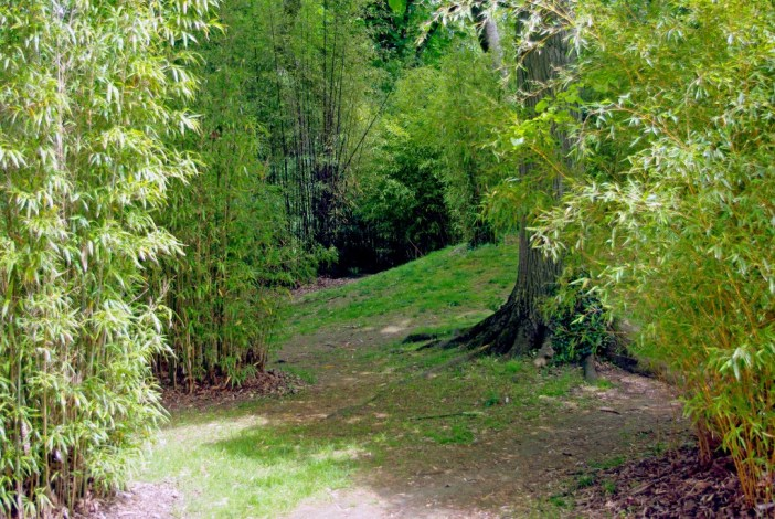 In the Japanese Garden of the Parc de Boulogne © French Moments