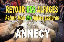 Return from the alpine pastures festival in Annecy © French Moments
