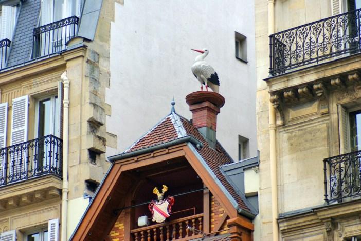 Brasserie alsacienne Au roi de la bière, Paris © French Moments