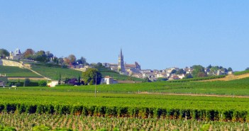 The vineyards of Saint-Emilion © French Moments