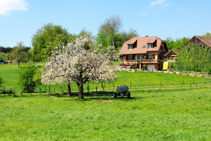 Photos of Spring in Alsace - Heidwiller © French Moments