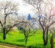Spring in Lorraine (Village of Lucey, Toulois) © French Moments
