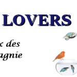 french-pets-lovers