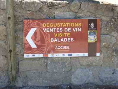 Tastings, sales, visit and walks at Le Bouis  September 2017