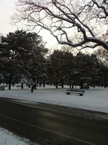 high-park-sous-neige