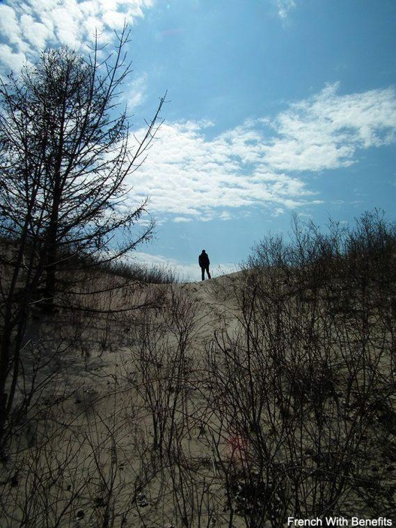 sandbanks_dune2